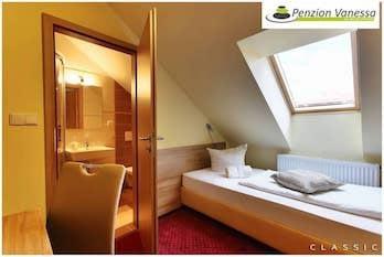 Zvýhodněná cena pro 1 osobu, ubytování penzion Brno